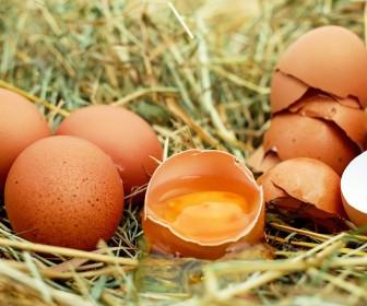 interpretacja snu Sen o jajku